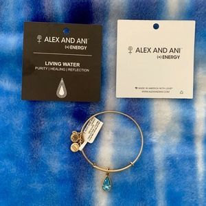 Alex & Ani Living Water Charity By Design Bangle